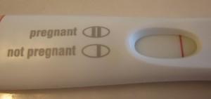 not pregnant